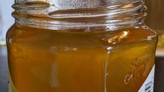 Dandelion Honey teaser image